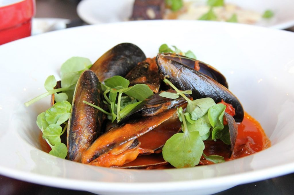portarlington mussel festival, queenscliff point lonsdale holiday accommodation australia, beach house